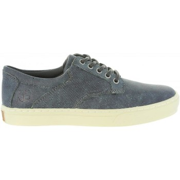 Chaussures Homme Baskets basses Timberland A1PZX ADVENTURE Gris