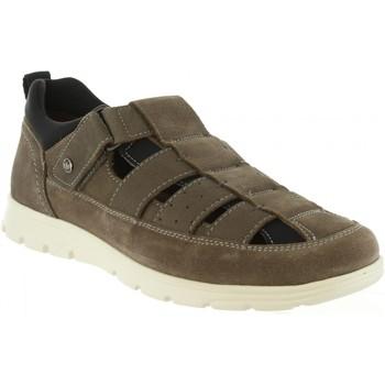 Chaussures Homme Sandales et Nu-pieds Panama Jack DONOVAN C4 Gris