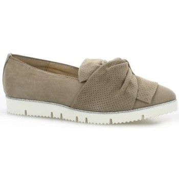 Chaussures Femme Mocassins Alpe Mocassins cuir velours Taupe
