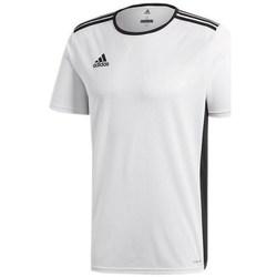 Vêtements Enfant T-shirts manches courtes adidas Originals Entrada 18 Junior Blanc