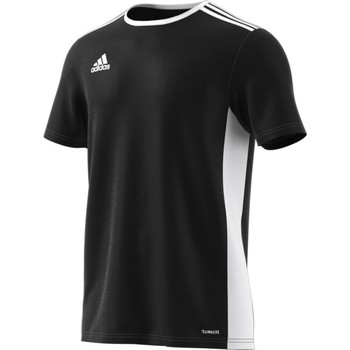 Vêtements Homme T-shirts manches courtes adidas Originals Entrada 18 Blanc,Noir