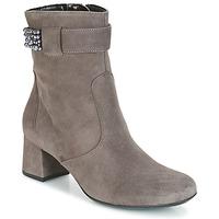 Chaussures Femme Bottines Ara GESPIRINO GRIS