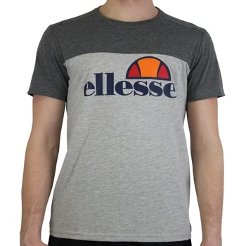 Vêtements Homme T-shirts manches courtes Ellesse Tee-shirt 1031N Heritage Collection Gris