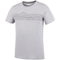 Vêtements Homme T-shirts manches courtes Columbia M Hillvalley Forest Ss Tee Gris clair