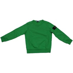 Vêtements Enfant Sweats Stone Island Junior 681661840 sweat-shirt Enfant Vert Vert
