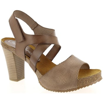 Chaussures Femme Sandales et Nu-pieds Coco & Abricot V0933A Taupe