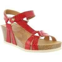 Chaussures Femme Sandales et Nu-pieds Panama Jack VIOLETTA SNAKE CHAROL B1 Rojo