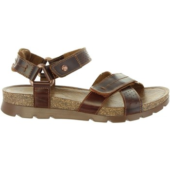 Chaussures Homme Sandales et Nu-pieds Panama Jack SAMBO EXPLORER C4 Marrón