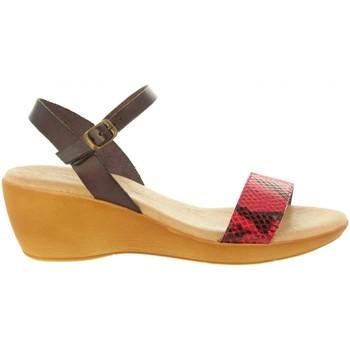 Chaussures Femme Sandales et Nu-pieds Cumbia 31009 Rojo