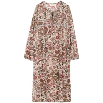 Vêtements Femme Robes courtes Cherry Paris Robe Glenrose Beige