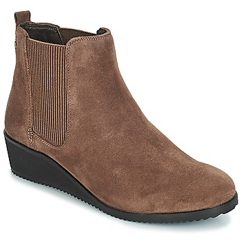 Chaussures Femme Boots Hush puppies COLETTE Marron
