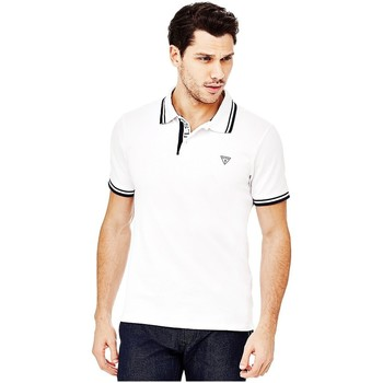 Polo Guess Polo Homme Ronald Blanc