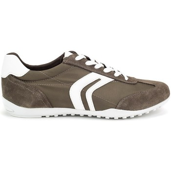 Chaussures Homme Baskets basses Geox Wells Olive