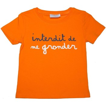 Vêtements Enfant T-shirts manches courtes Interdit De Me Gronder Duo Orange