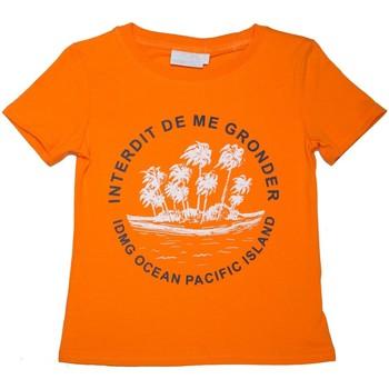 Vêtements Enfant T-shirts manches courtes Interdit De Me Gronder T-shirt manches courtes PACIFIQUE Orange