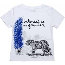 Vêtements Enfant T-shirts manches courtes Interdit De Me Gronder T-shirt manches courtes PANTHERE Blanc