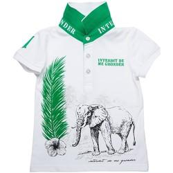 Vêtements Garçon Polos manches courtes Interdit De Me Gronder Ivory Blanc