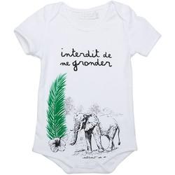 Vêtements Enfant Bodys Interdit De Me Gronder Body manches courtes SAVA Blanc