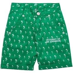Vêtements Garçon Shorts / Bermudas Interdit De Me Gronder Short SUN Vert