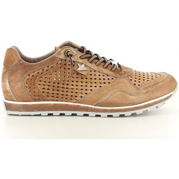 Chaussures Homme Baskets basses Cetti 848 Marron