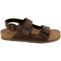 Chaussures Homme Sandales et Nu-pieds Mephisto Nardo Marron cuir