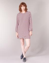Vêtements Femme Robes courtes Pepe jeans TRUDY Bleu / Blanc / Rouge