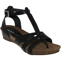 Chaussures Femme Sandales et Nu-pieds Xapatan 5134 Noir cuir