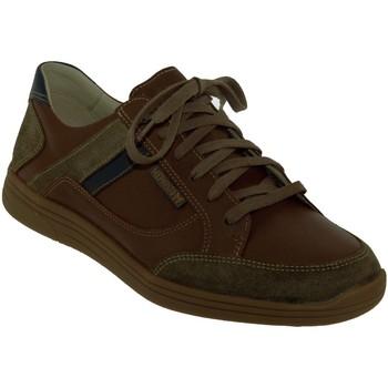 Chaussures Homme Baskets basses Mephisto Frank Marron moyen cuir