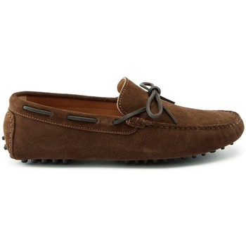 Chaussures Homme Mocassins Hugs & Co. Lacé Mocassins en daim Marron