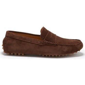 Chaussures Homme Mocassins Hugs & Co. Mocassins penny daim Marron
