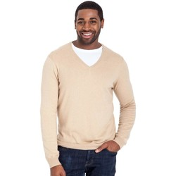 Vêtements Homme Pulls Woolovers Pull à col V Homme beige