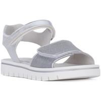Chaussures Fille Sandales et Nu-pieds Nero Giardini MP NERO GIARDINI  NOTURNO GHIACCIO Bianco