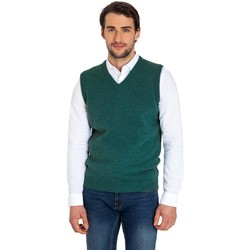 Vêtements Homme Gilets / Cardigans Woolovers Pull sans manches Homme vert