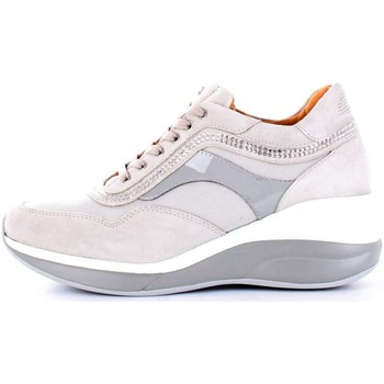 Chaussures Femme Baskets basses Paciotti 4us RRED1WTCA BASKETS Femme Gris