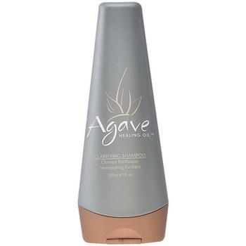 Beauté Shampooings Agave Healing Oil Clarify Shampoo  250 ml