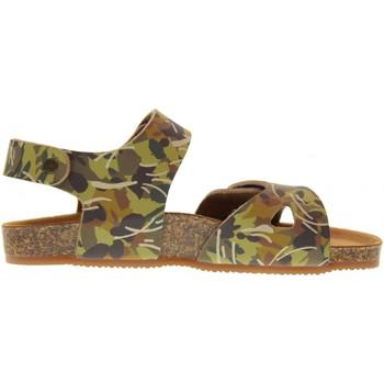 Chaussures Enfant Nouveautés de ce mois Gold Star  Tortora