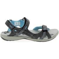 Chaussures Femme Sandales et Nu-pieds Elementerre Curcuma Gris Gris