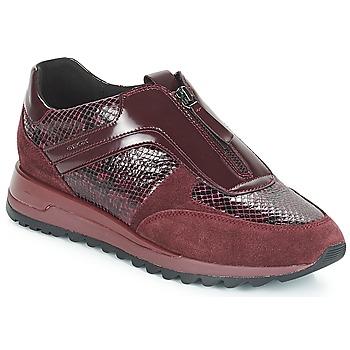 Chaussures Femme Baskets basses Geox D TABELYA Bordeaux