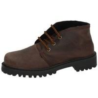 Chaussures Femme Boots Potomac  Marron