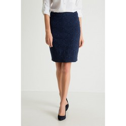 Vêtements Femme Jupes Greenpoint Jupe model 79488 bleu marine