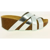 Chaussures Femme Sandales et Nu-pieds Iota bio-181-72216 argent