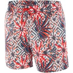 Vêtements Homme Maillots / Shorts de bain Impetus Beachwear Maillot de bain imprimé homme Isthmus rouge Rouge