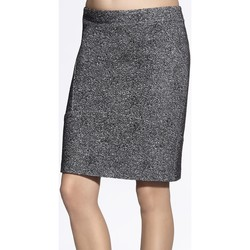 Vêtements Femme Jupes Enny Jupe model 43821 gris