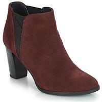 Chaussures Femme Bottines André ROSACE Bordeaux
