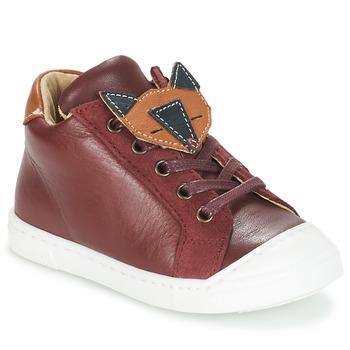 Chaussures Garçon Boots André RENARDEAU Bordeaux
