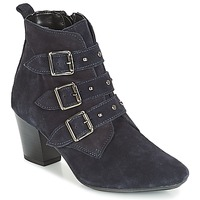 Chaussures Femme Bottines André TRACY Bleu