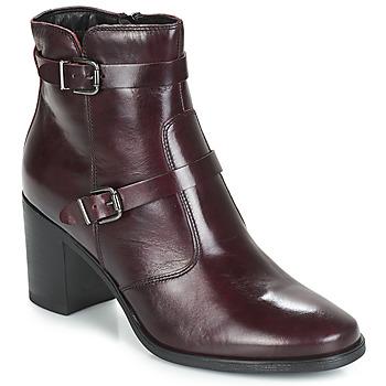 Chaussures Femme Boots André TORI Bordeaux