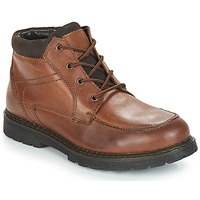 Chaussures Homme Boots André AREZZO Marron