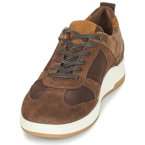 Basses Marron Baskets Chaussures Homme André Cinza P80wnkNOXZ