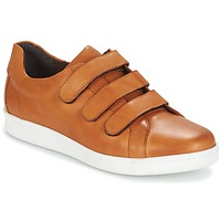 Chaussures Homme Baskets basses André AVENUE Marron